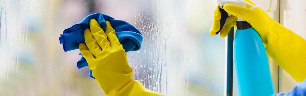 Terceirização de Limpeza Escolas